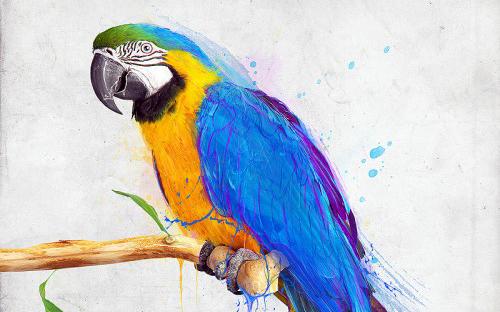 photoshop 5 - نرم افزار فتوشاپ